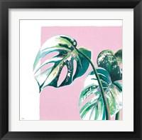 New Tropics II Framed Print