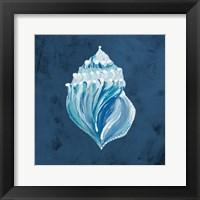 Framed Azul Dotted Seashell on Navy II