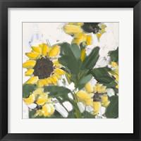 Framed Sunflower Garden