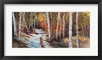 Framed Aspen in Snow Path