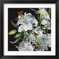 Framed Lilies in Light