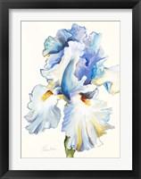 Framed Iris in Blues