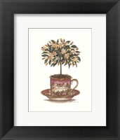 Framed Tea Topiary #6