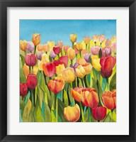 Framed Tulips in Blue Sky