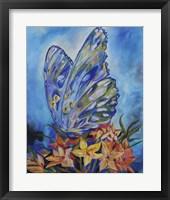 Framed ButterflyKisses
