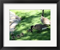 Framed Family Time
