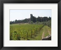 Framed Tuscany 1