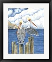 Framed Pelicans Paradise