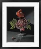 Framed Cardinal With The Cup Of Grapes