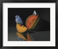 Framed Melon And The Blue Bird