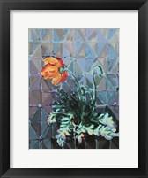 Framed Poppy and Patterns