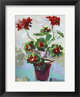 Framed Geranium on Blue