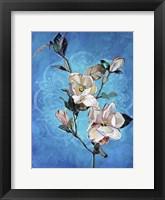 Framed Magnolia Mandala