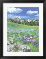 Framed Alpine meadows