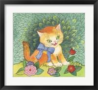 Framed Funny Cat