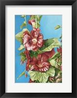 Framed Red Holly