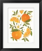 Citrus Orange Botanical Framed Print