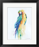 Colorful Parrots II Framed Print