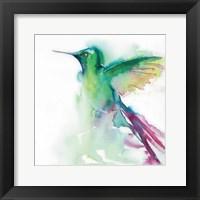 Framed Hummingbirds III