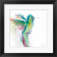 Hummingbirds II Framed Print