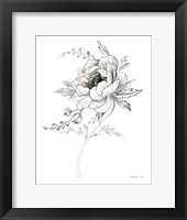 Sketchbook Garden VIII BW Framed Print