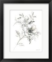 Sketchbook Garden VII BW Framed Print