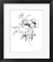 Sketchbook Garden X BW Framed Print