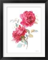 Bold Roses II Framed Print