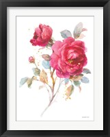 Framed Bold Roses I