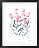 Framed All the Protea