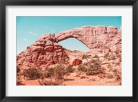 What a View IV Framed Print