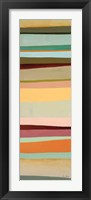 Sonoran Stripes I Framed Print