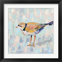 Coastal Plover IV v2 Neutral Framed Print