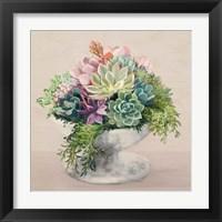 Festive Succulents II Blush Framed Print