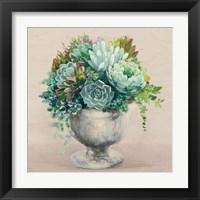 Festive Succulents I Blush Framed Print