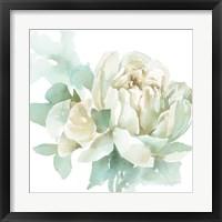 Poetic Blooming I Framed Print