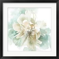 Poetic Blooming II Framed Print