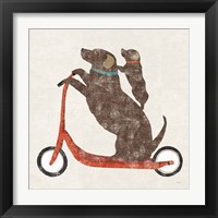 Framed Doxie Ride Working