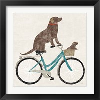 Framed Lab Ride