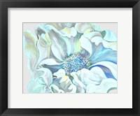 Framed Vibrant Flower