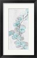 Framed Eucalyptus Glow 2