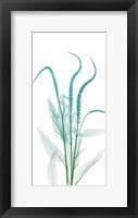 Serene Flourish 2 Framed Print