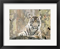 Framed Tiger Love