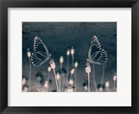 Framed Butterfly Love