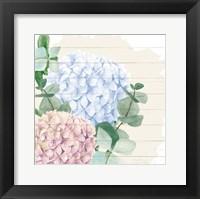 Framed Hydrangea 1
