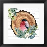 Framed Winter Birds 3