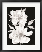 Framed Black & White Flowers I
