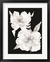 Framed Black & White Flowers II