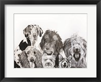 Framed Lots of Dogs