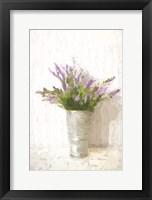 Framed Lavender on White